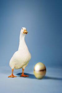 Valuing Nest Egg